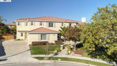 Pleasanton Single Family Home For Sale: 1093 Shadow Hills Ct