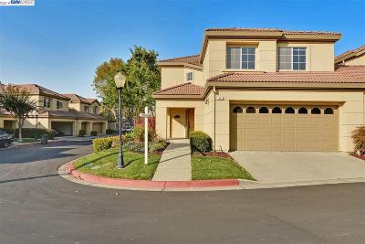San Ramon Single Family Home New: 331 Jade Court