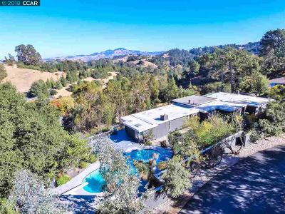 Orinda Single Family Home For Sale: 112 Scenic Drive