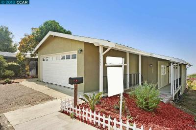 San Leandro Single Family Home For Sale: 16665 Winding Blvd