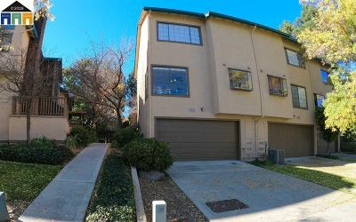 Fremont Condo/Townhouse New: 43139 Mayfair Park Ter