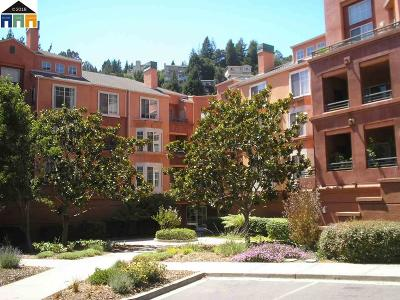 Alameda County Condo/Townhouse New: 280 Caldecott Lane #211