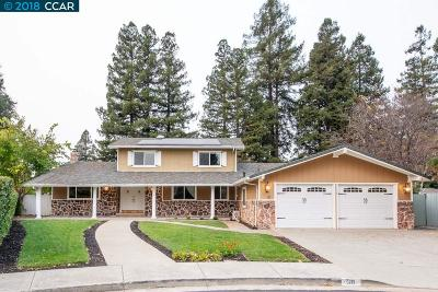 Walnut Creek Single Family Home New: 30 Corte Ellena