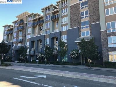 Dublin Rental For Rent: 5501 De Marcus Blvd #429