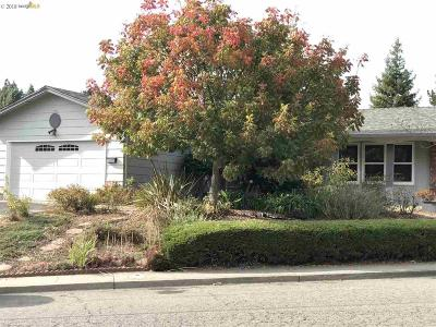 Vallejo Single Family Home For Sale: 213 Parkview Ter