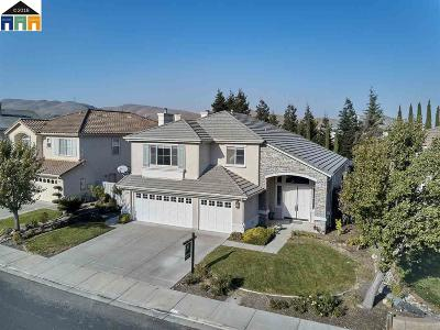 Alameda County Single Family Home New: 10758 Inspiration Cir