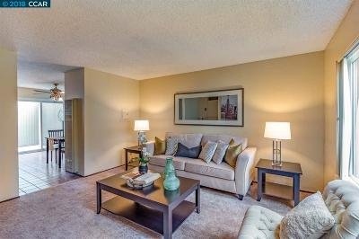 Contra Costa County Condo/Townhouse New: 3051 Treat Blvd #74