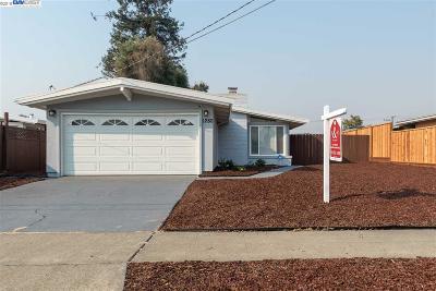 Hayward Single Family Home New: 1280 Encina Street