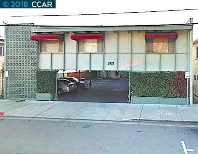 Lafayette Rental For Rent: 3433 Golden Gate Way #4