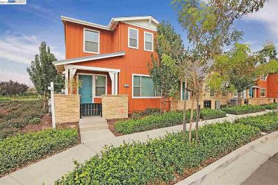 Livermore Condo/Townhouse New: 502 Sandalwood Dr