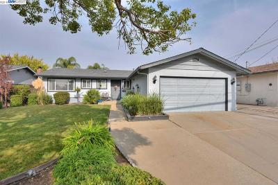 Livermore Single Family Home New: 672 El Caminito