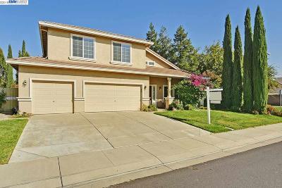 Lathrop Single Family Home New: 789 Donovan Street