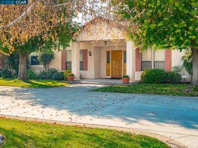 Tracy Single Family Home New: 27389 S Leeward Way