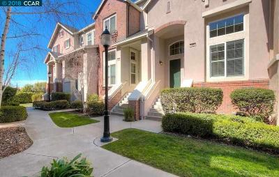 Livermore Condo/Townhouse New: 2695 3rd St