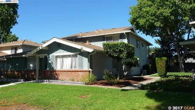 Concord Condo/Townhouse For Sale: 1447 Del Rio Cir #A