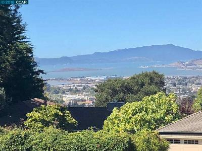 Albany, Berkeley, El Cerrito, El Sobrante, Hercules, Kensington, Pinole, Richmond, Rodeo, San Pablo Single Family Home New: 565 Arlington Ave
