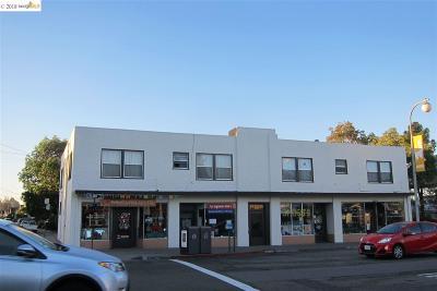 Albany Multi Family Home For Sale: 1272 Solano Avenue