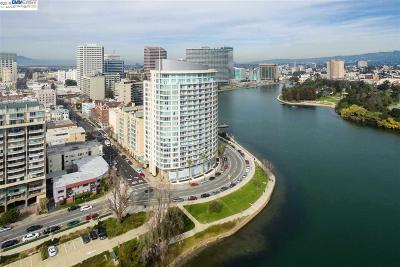 Oakland Condo/Townhouse New: 1 Lakeside Dr #205