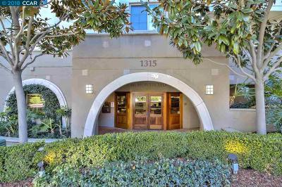 Walnut Creek Condo/Townhouse New: 1315 Alma Ave #135