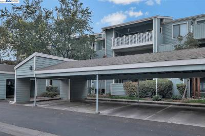 Fremont CA Condo/Townhouse New: $369,888