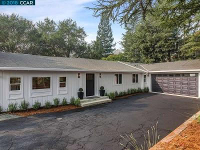 Dublin, Pleasanton, Alamo, Danville, Orinda, San Ramon Single Family Home For Sale: 91 Scenic Drive