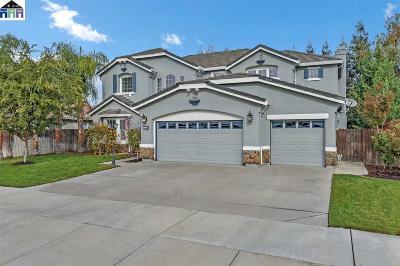 Ripon Single Family Home For Sale: 379 John Kamps Way