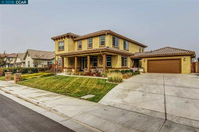 Brentwood Single Family Home New: 393 Havasu Ct