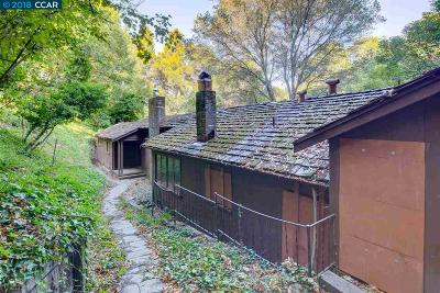 Orinda Single Family Home New: 54 La Encinal