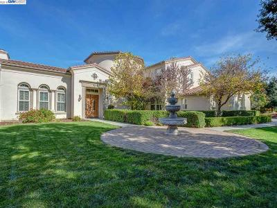 Pleasanton CA Single Family Home For Sale: $3,100,000