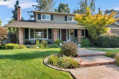 Fremont Single Family Home New: 679 Cuenca Way