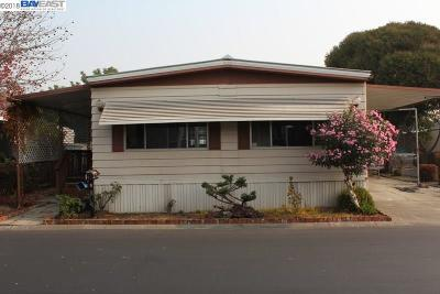 Hayward Mobile Home Pending Show For Backups: 28860 La Corona