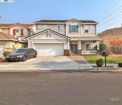 Castro Valley Single Family Home For Sale: 5275 Misty Spring Dr