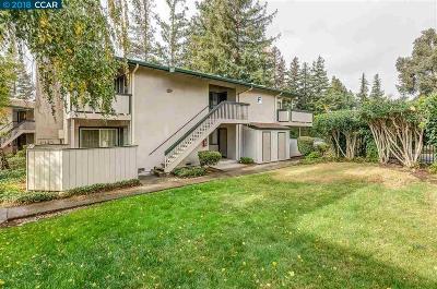 Concord Condo/Townhouse For Sale: 5460 Concord Blvd #F6