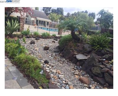 Milpitas Condo/Townhouse For Sale: 464 Dempsey Rd #267