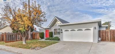 Fremont Single Family Home For Sale: 5081 Hyde Park Dr