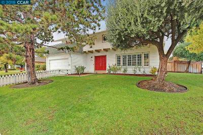 Dublin CA Single Family Home For Sale: $1,195,000