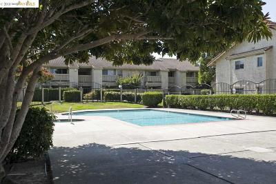 San Pablo Condo/Townhouse Sold: 22 Las Moradas Cir