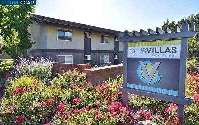 Walnut Creek CA Condo/Townhouse For Sale: $409,000