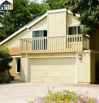 Concord Single Family Home New: 4208 Dubhe Ct
