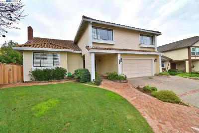 Castro Valley Single Family Home Pending Show For Backups: 16816 Columbia Dr