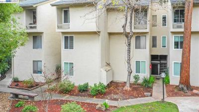 Walnut Creek Condo/Townhouse New: 2724 Oak Road #89