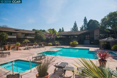 Walnut Creek Condo/Townhouse For Sale: 101 Player Ct #4