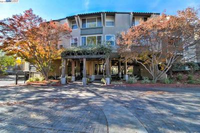 Livermore Condo/Townhouse New: 1087 Murrieta Blvd #130