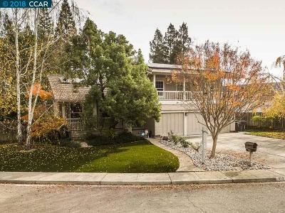 San Ramon Single Family Home For Sale: 532 Burns Cir