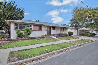 Hayward Single Family Home For Sale: 284 Rousseau St