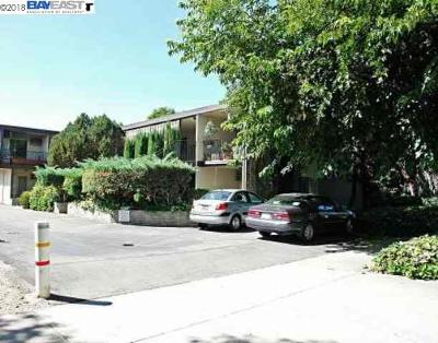 Pleasanton Rental For Rent: 568 Saint John St #3