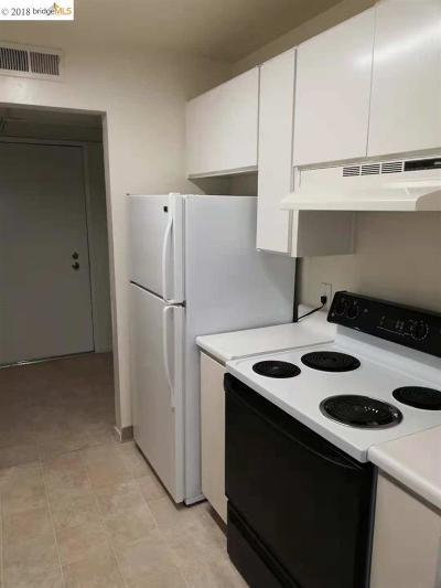 Walnut Creek Rental For Rent: 440 N Civic #208