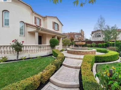 Alamo, Danville, San Ramon, Dublin, Pleasanton, Livermore Single Family Home For Sale: 7287 Royal Oaks Ct
