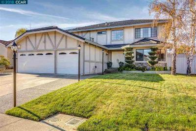Vallejo Single Family Home New: 141 Doncaster Dr