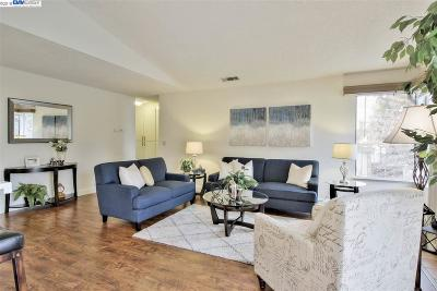 Fremont Condo/Townhouse New: 38932 Cherry Glen Cmn